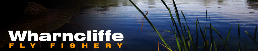 Wharncliffe Fly Fishing